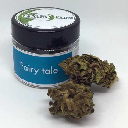 Fairy Tale vasetto 2.5 gr