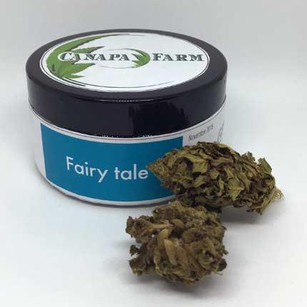 Fairy Tale vasetto da 5 gr